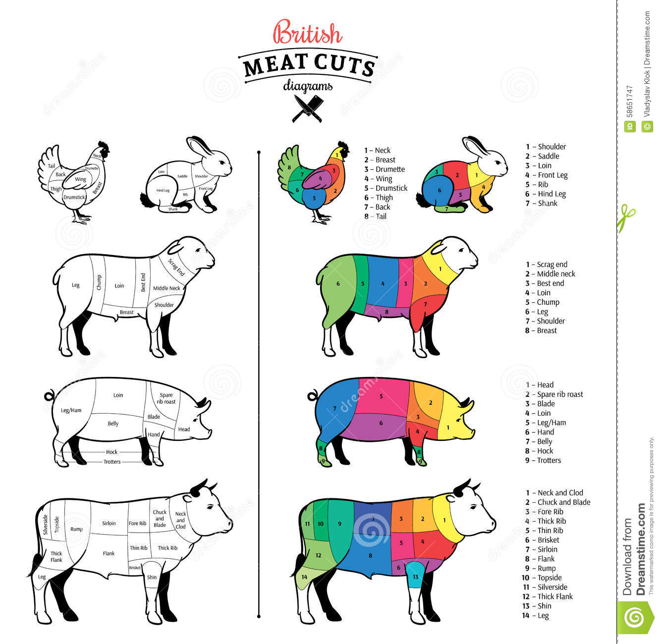 hight resolution of british cuts of beef pork lamb rabbit and chicken diagrams