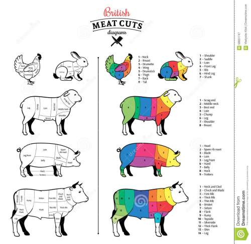 small resolution of british cuts of beef pork lamb rabbit and chicken diagrams