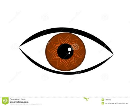 small resolution of brown eye symbolic brown eye illustration royalty free illustration