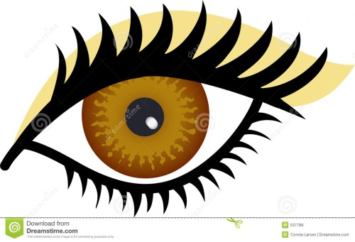 small resolution of brown eye stock illustrations 11 045 brown eye stock illustrations vectors clipart dreamstime