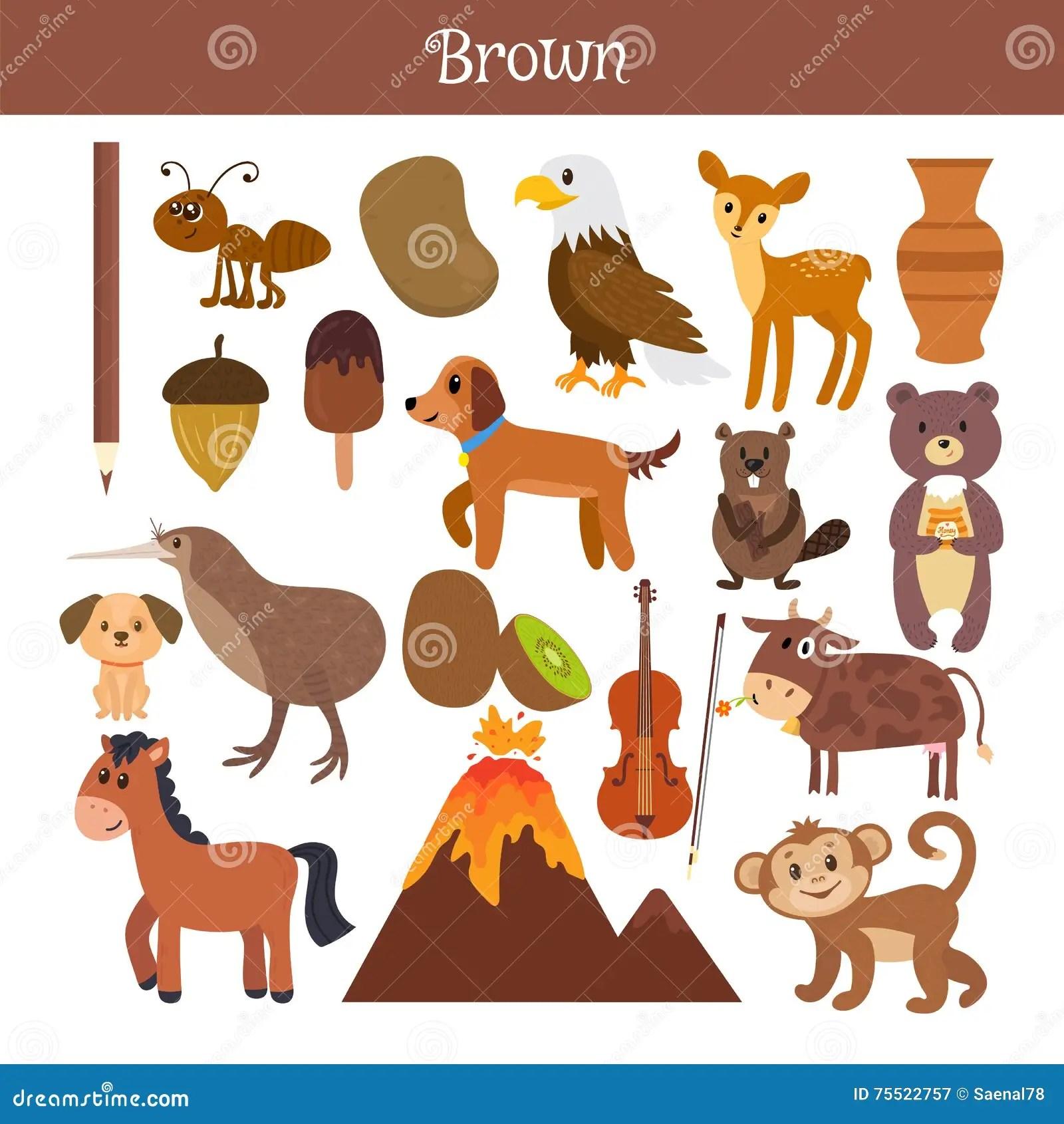 Brown Impari Il Colore Insieme Di Istruzione Illustrazione