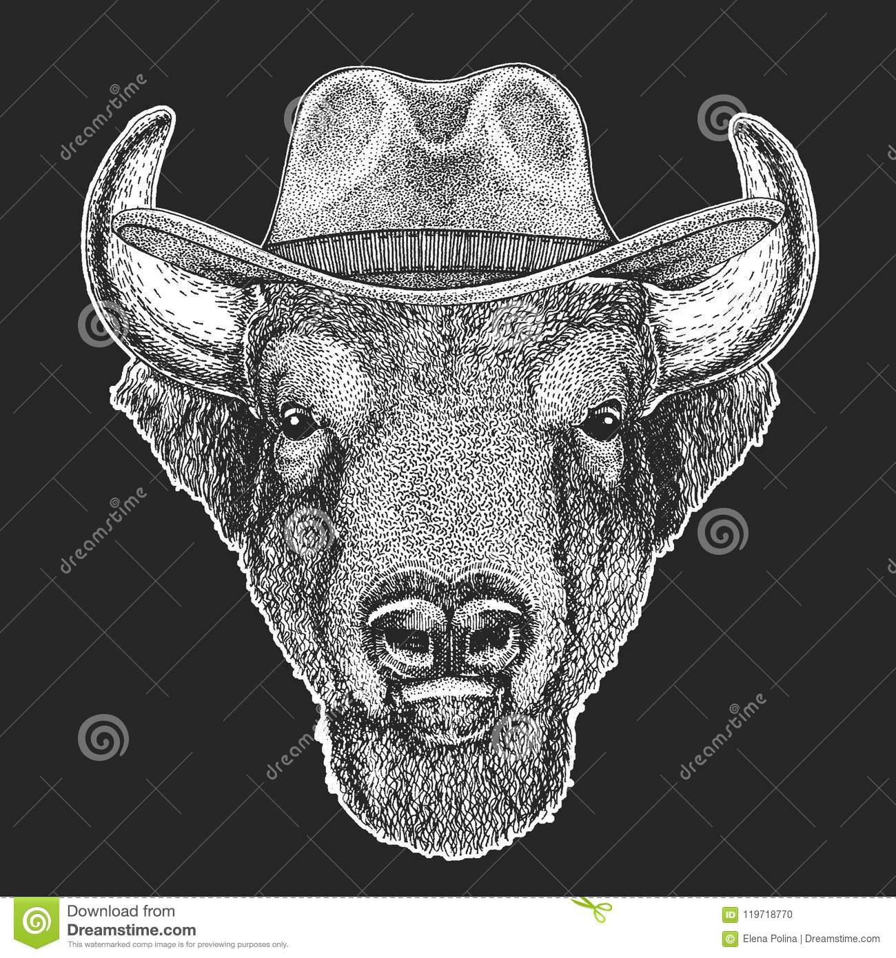 Buffalo Bison Ox Bull Wild West Traditional American