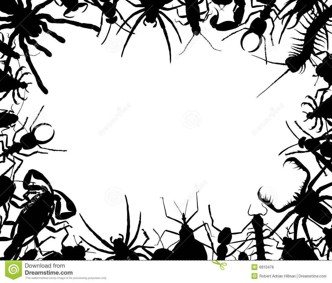 Bug Frame Stock Vector Illustration Of Border Animal