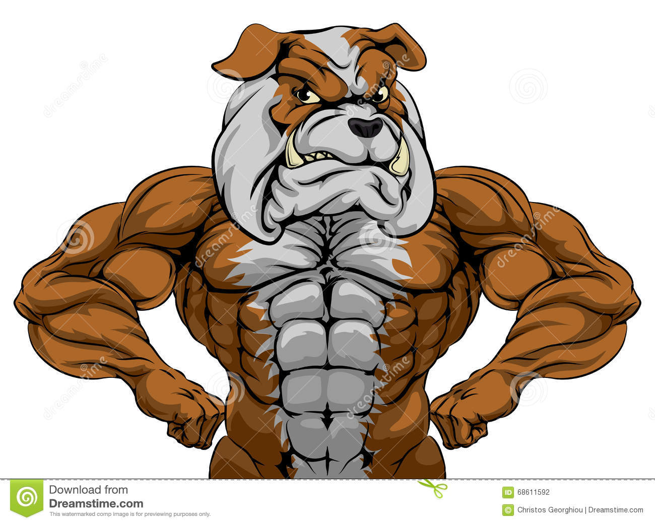 Bulldog Muscles Cartoon