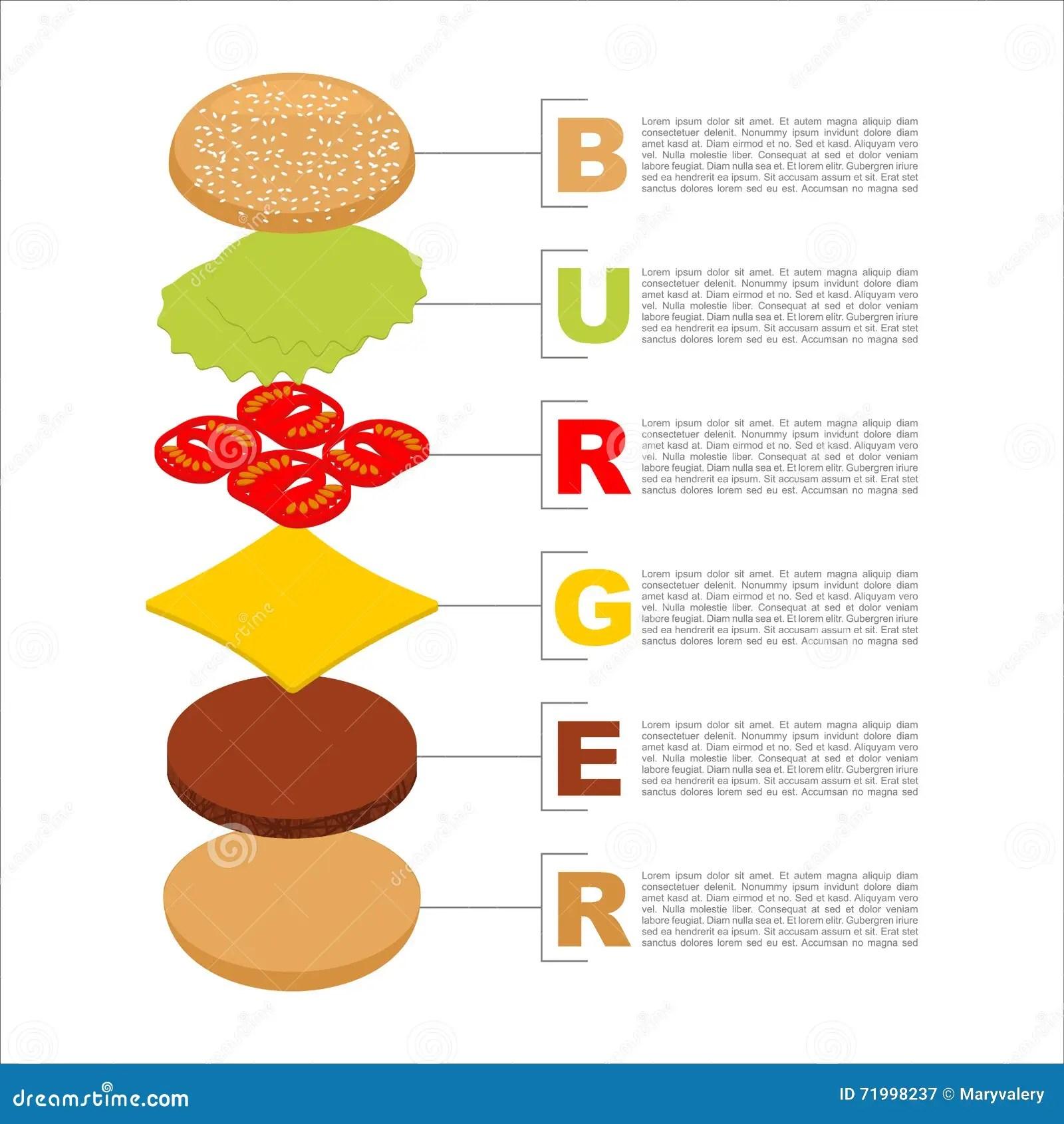 essay writing sandwich diagram digital power meter wiring burger infographics structure of hamburger isometrics