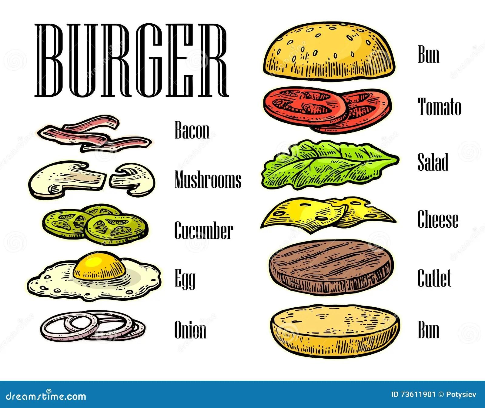 Burger Ingre Nts On Black Background Stock Vector