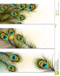 Business Cards Vector Set With Peacock Ferns Stock Vector ...