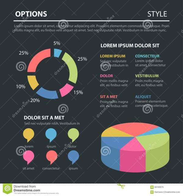 Infographic Pie Chart for Marketing