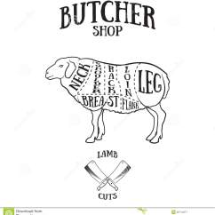 Vintage Lamb Butcher Diagram Painless Wiring Installation Instructions Cuts Scheme Of Or Mutton Stock Vector Image
