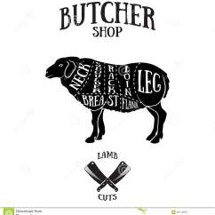 Vintage Lamb Butcher Diagram Labeled Of Octopus Cuts Scheme Or Mutton Stock Vector Image