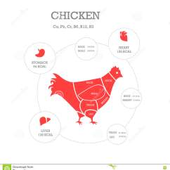 Chicken Wing Diagram Lutron 4 Way Dimmer Wiring Cuts Of Butcher Cartoon Vector