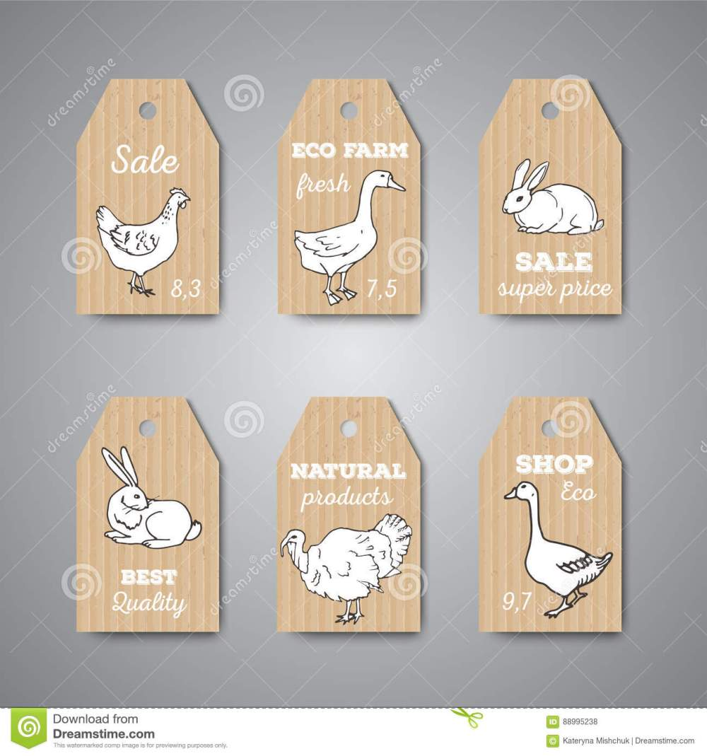 medium resolution of butchery shop price tags and labels