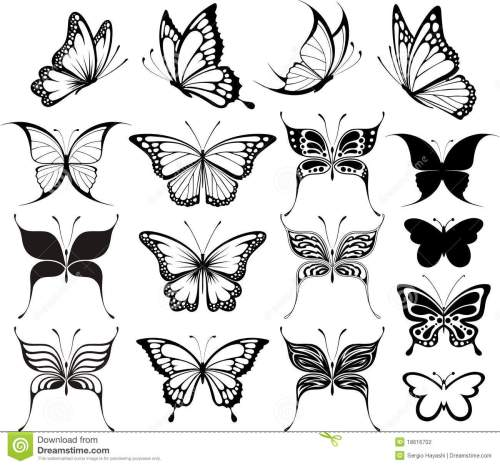 small resolution of butterfly clipart
