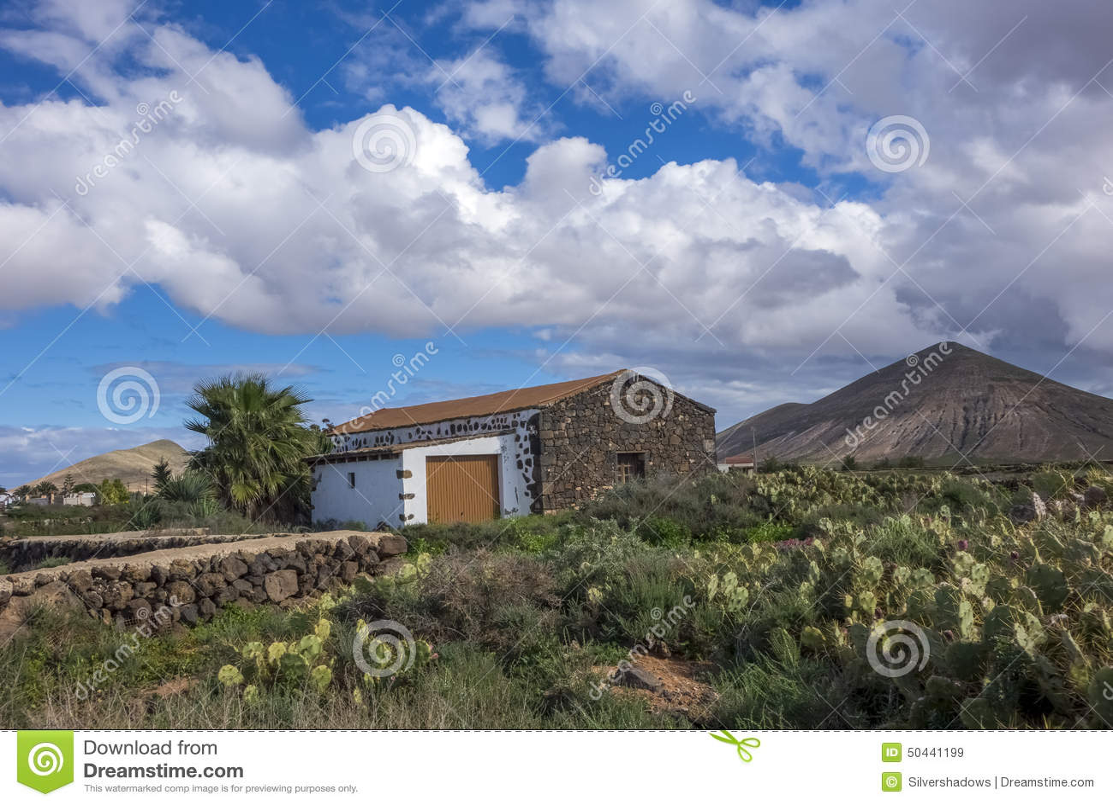 Cacti And Mountain View La Oliva Fuerteventura Las Palmas Canary Islands Spain Stock Photo