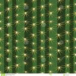 Cactus Plants Texture Seamless Pattern Background Stock Vector Illustration Of Sharp Mexico 38416204