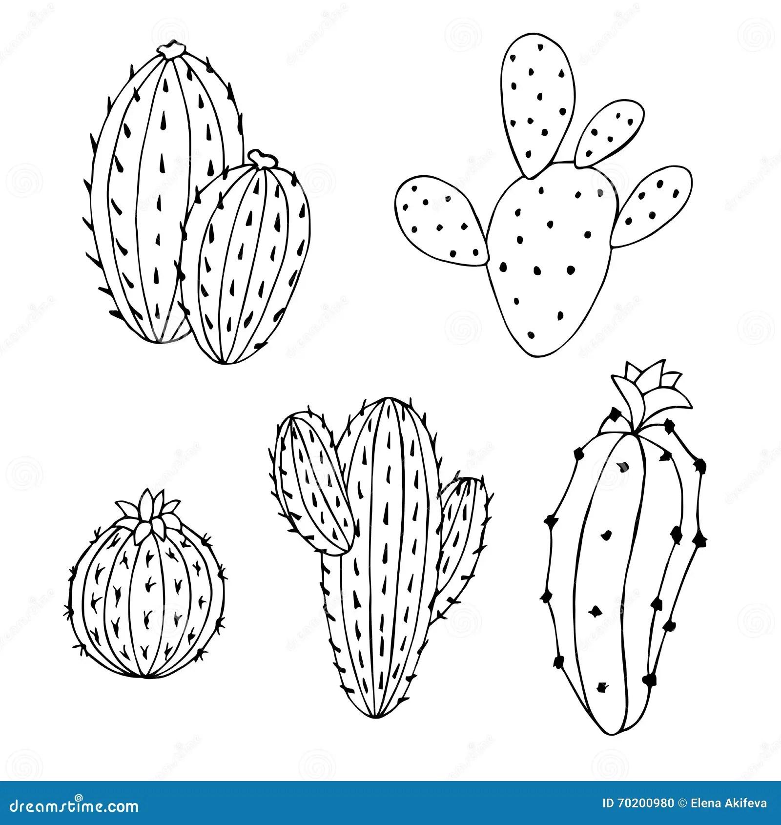 cactus set graphic art