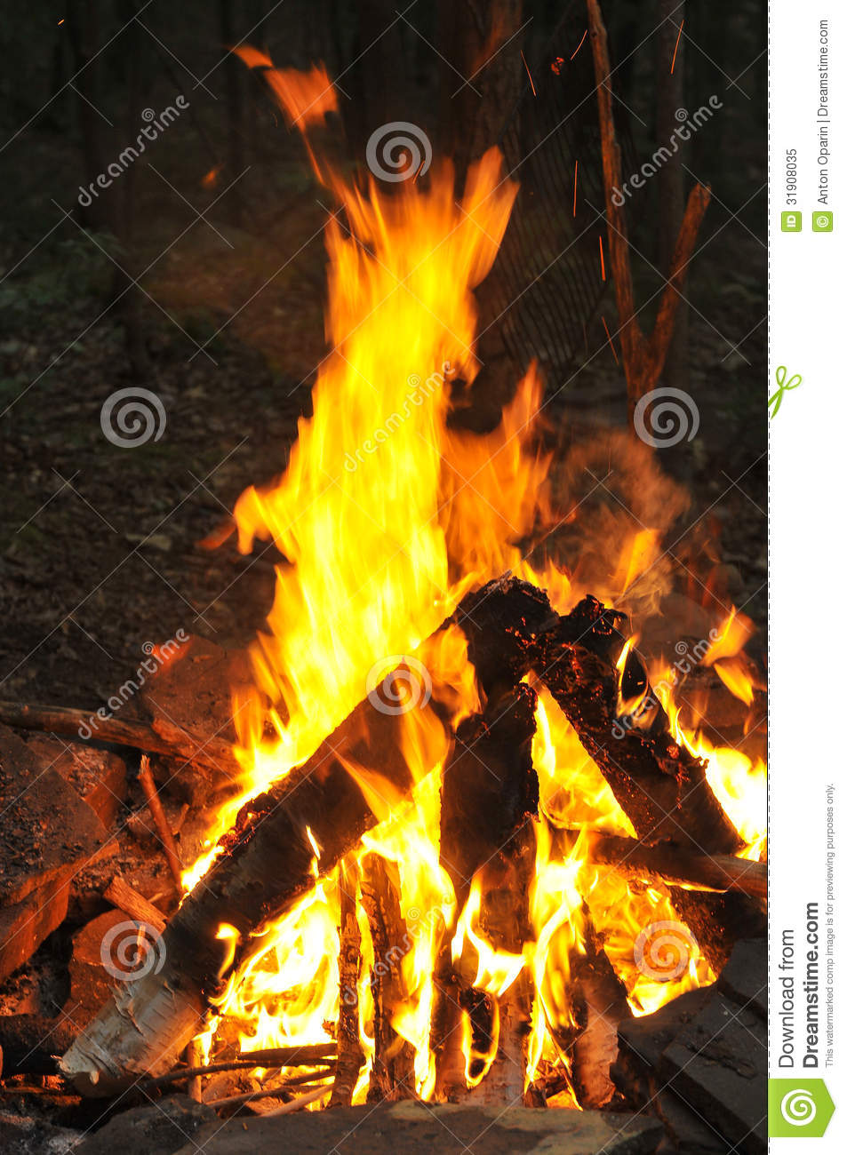 Camp Fire Burning Royalty Free Stock Photo  Image 31908035