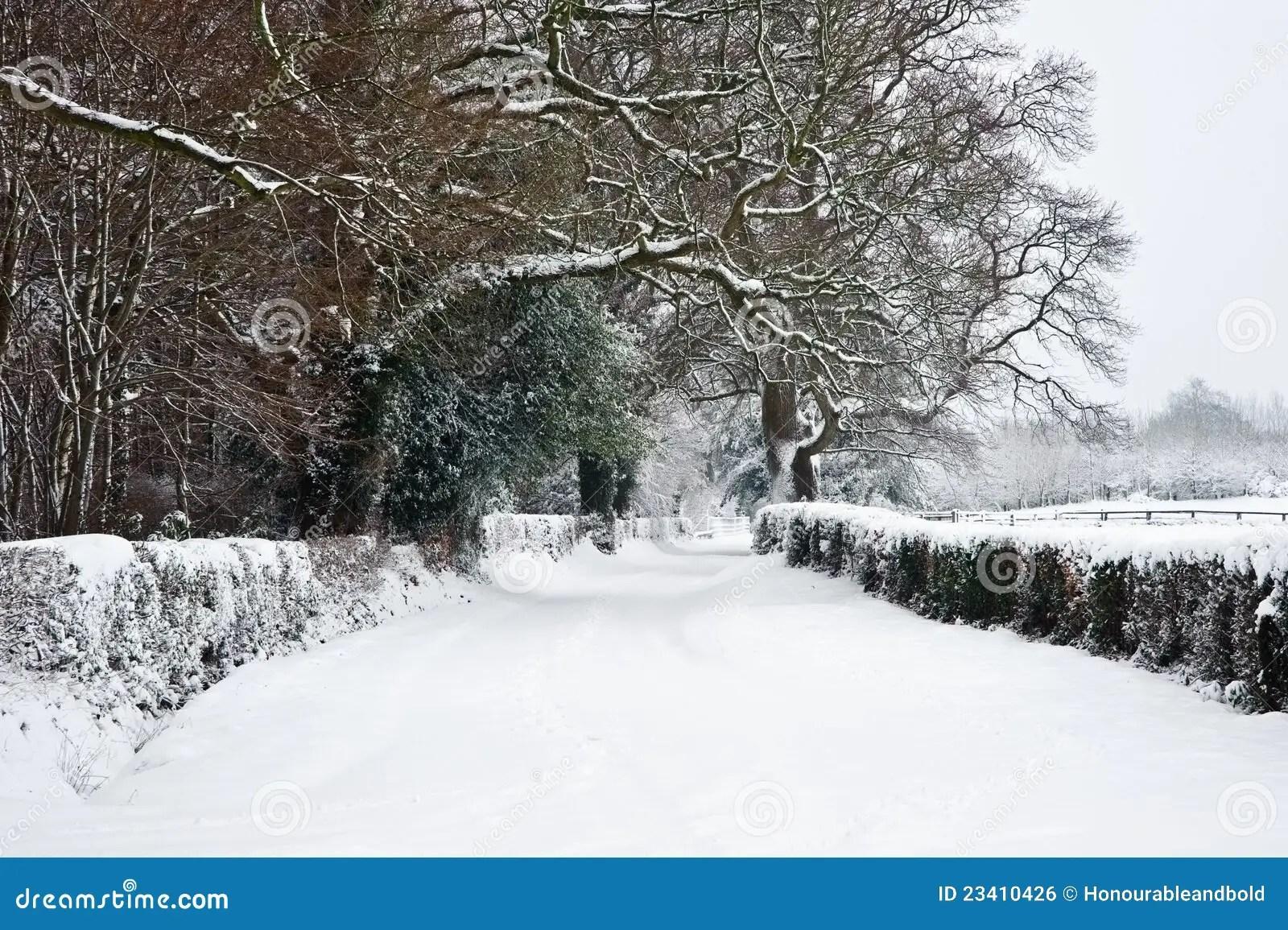 Campagna Rurual Inglese Nella Neve Di Inverno Fotografia Stock  Immagine di bianco flora 23410426