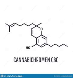 cannabichromen cbc vector illustration within the cannabis plant cbc occurs mainly as cannabichromenic acid [ 1600 x 1689 Pixel ]