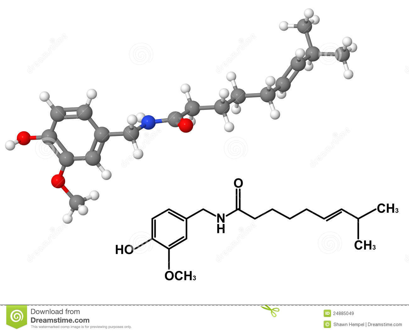 Capsaicin Molecule With Chemical Formula Royalty Free