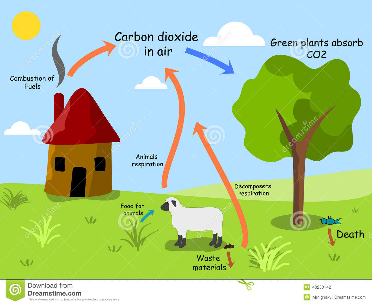 Carbon Dioxide Cycle Stock Vector Illustration Of Carbon