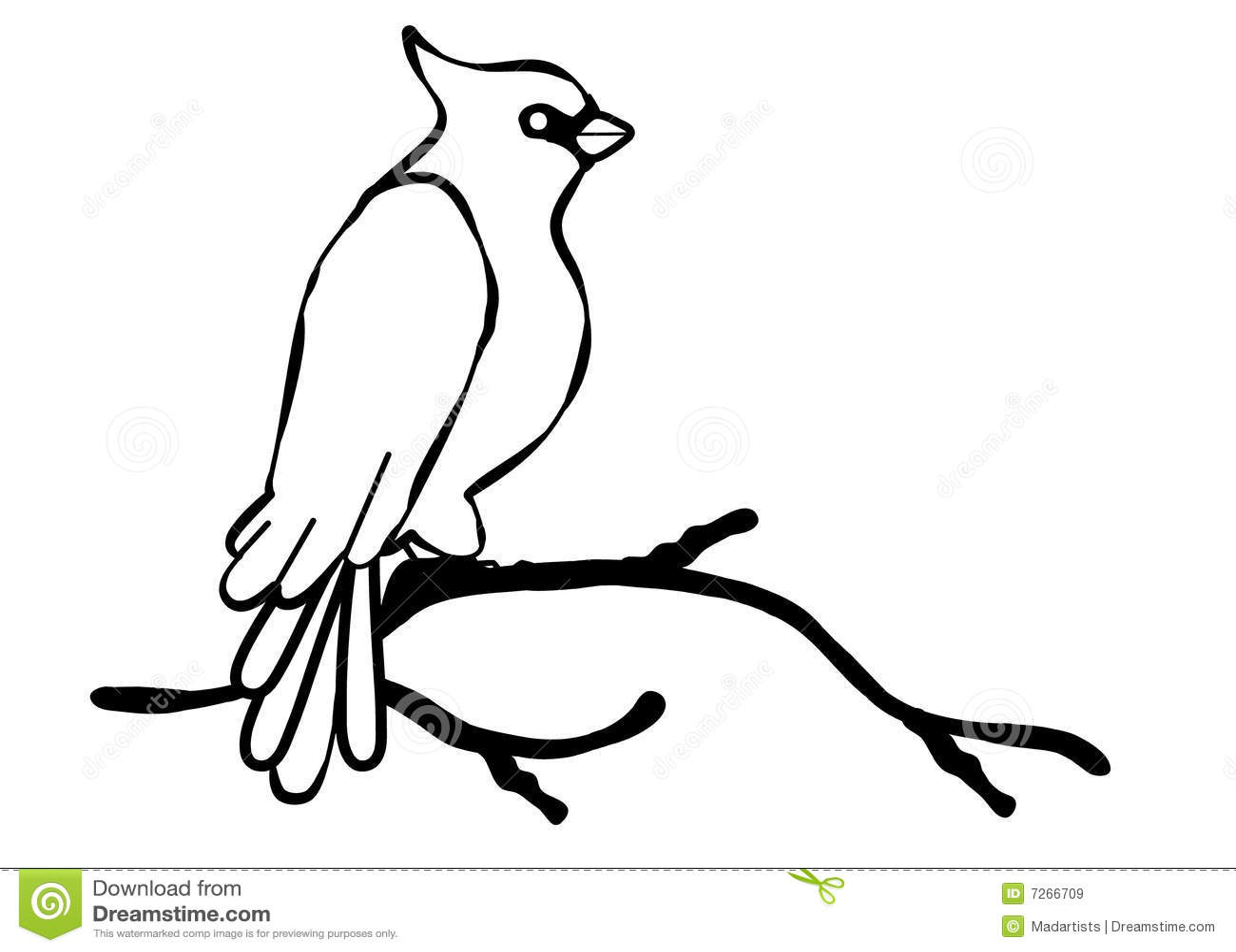 Cardinal Bird Line Art Royalty Free Stock Images