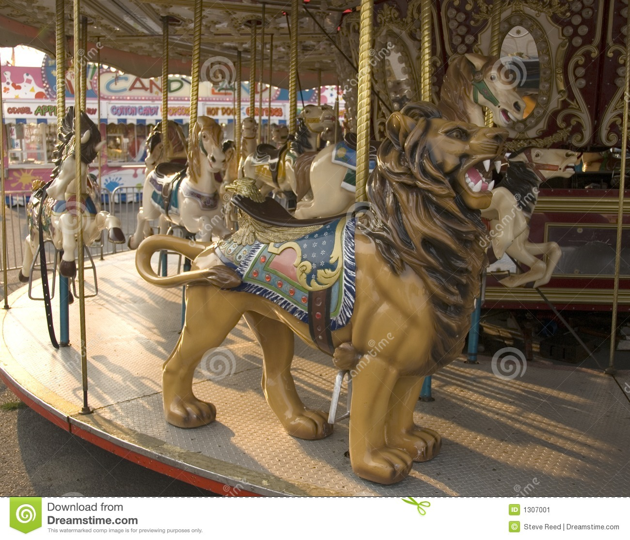 Carousel Horse And Lion Stock Image  Image 1307001