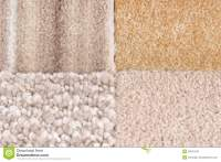 Carpet Selection Royalty Free Stock Photo
