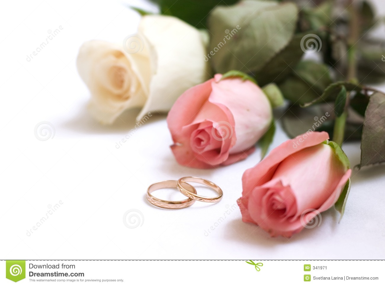 https fr dreamstime com image stock carte d invitation mariage image341971