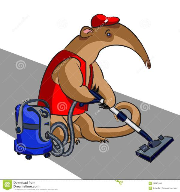 Anteater And Vacuum Cleaner Stock Illustration - 29767960