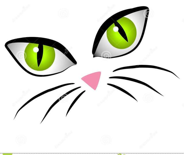 A Clip Art Cartoon Illustration Of The Facial Features Of A Cat Big Eyes Little Pink Nose And Whiskers Isolatd On A White Background