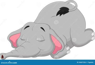 elephant sleeping cartoon elefante fumetto sonno dell slaap illustrazione grey beeldverhaalolifant dorme che vector ramo gatto sul zigeuner latijnse vrouw