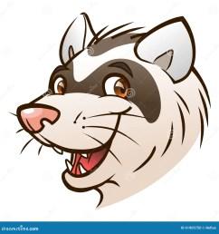 cartoon ferret head portrait of cartoon ferret on the white background royalty free illustration [ 1300 x 1390 Pixel ]