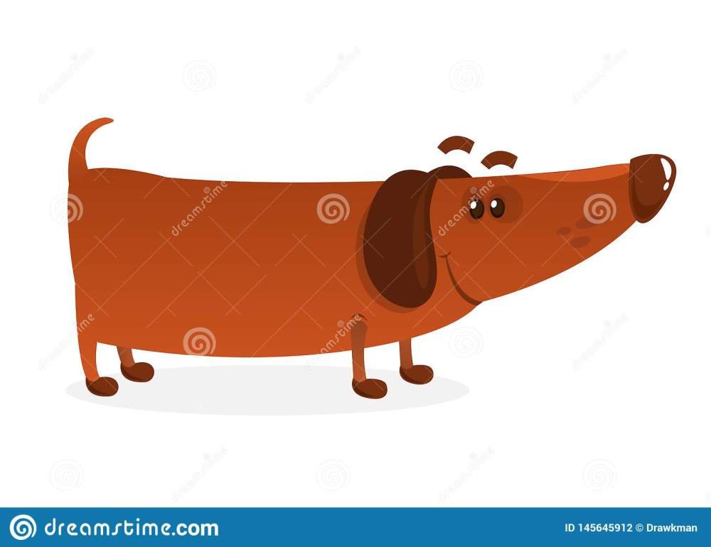 medium resolution of weiner dog stock illustrations 247 weiner dog stock illustrations vectors clipart dreamstime