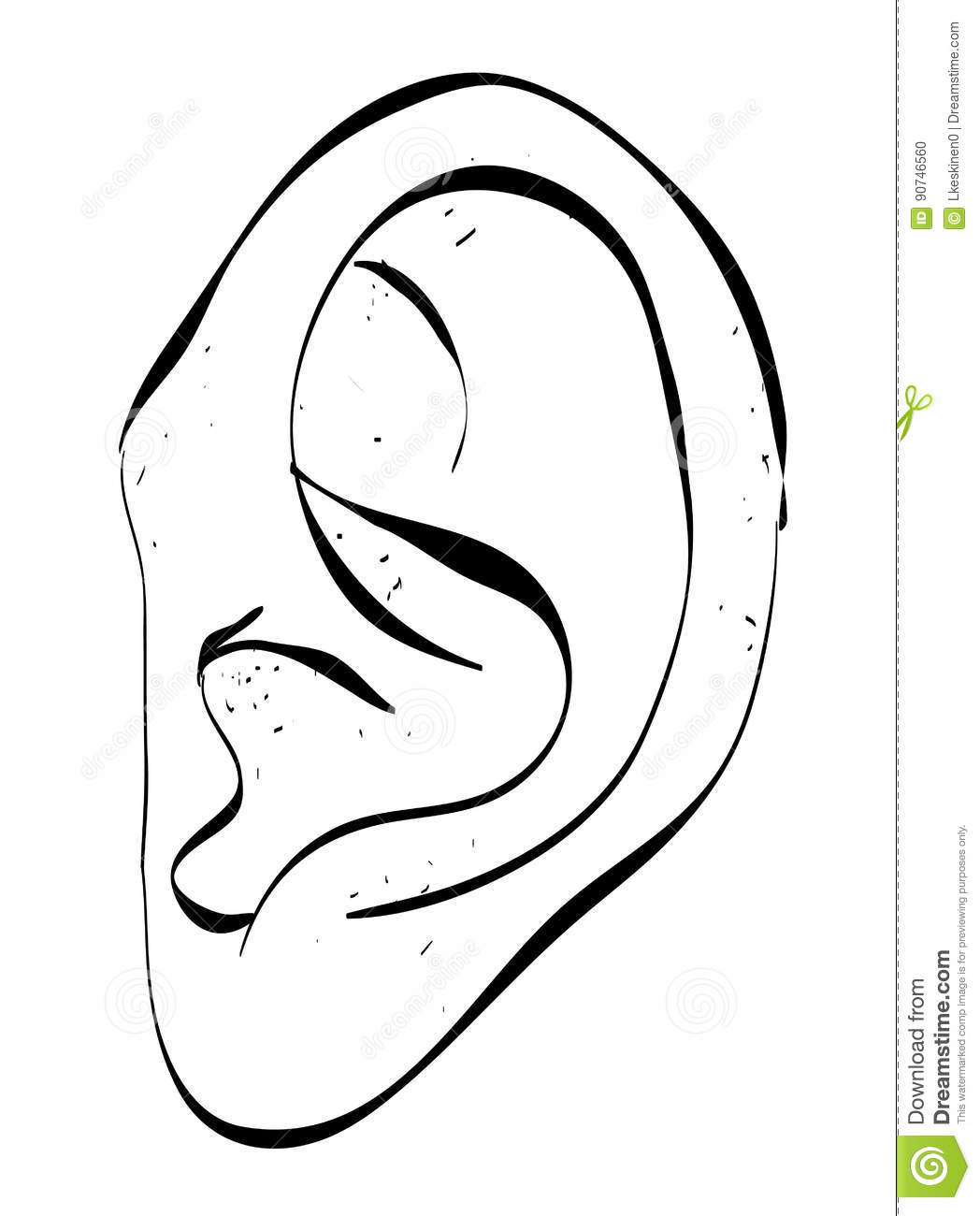 Cartoon Image Of Human Ear Stock Vector Illustration Of