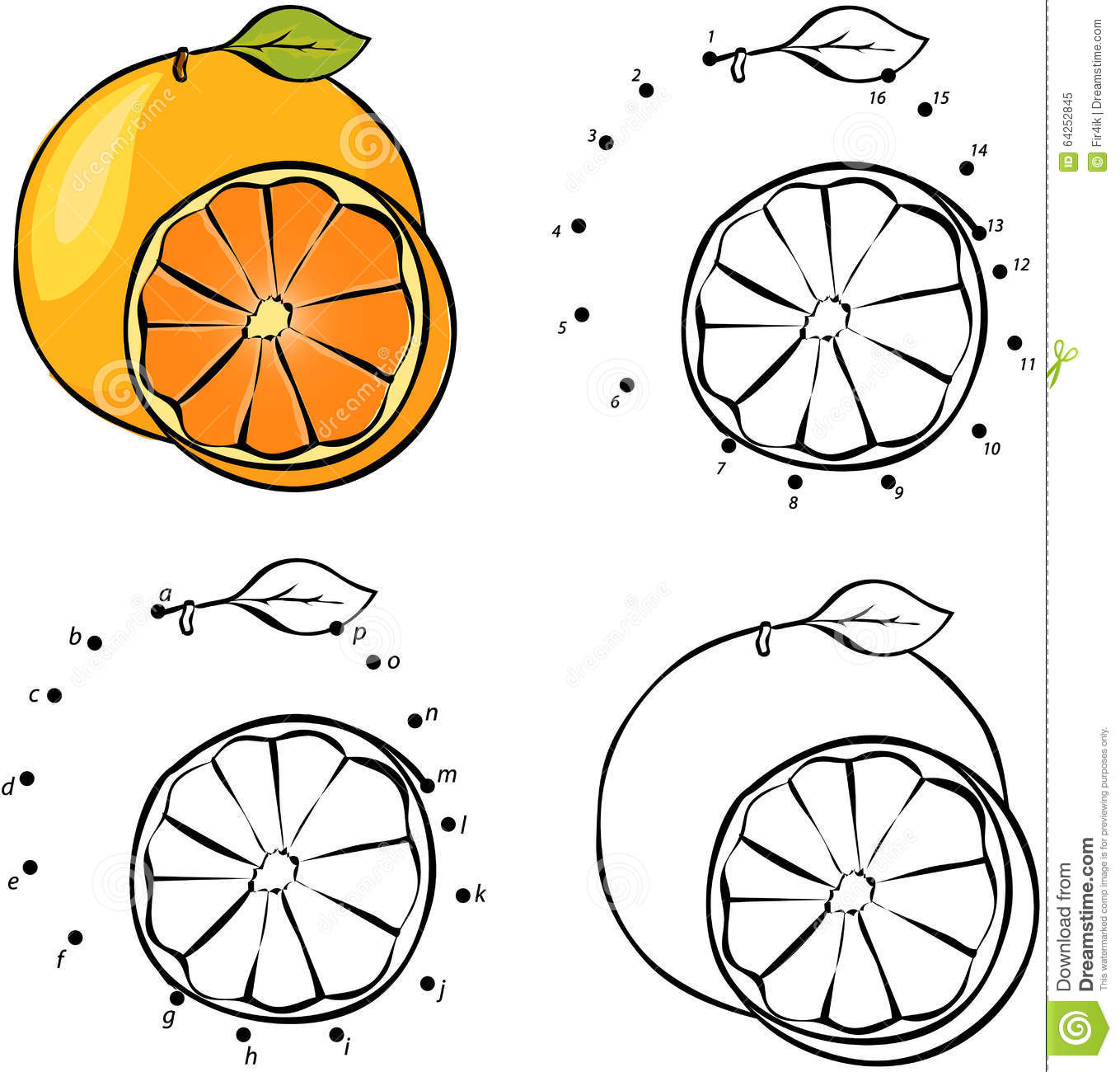 Cartoon Orange Vector Illustration Coloring And Dot To