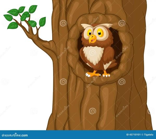 Cartoon Owl In Tree Stock Vector. Of Nature Bird - 45710101
