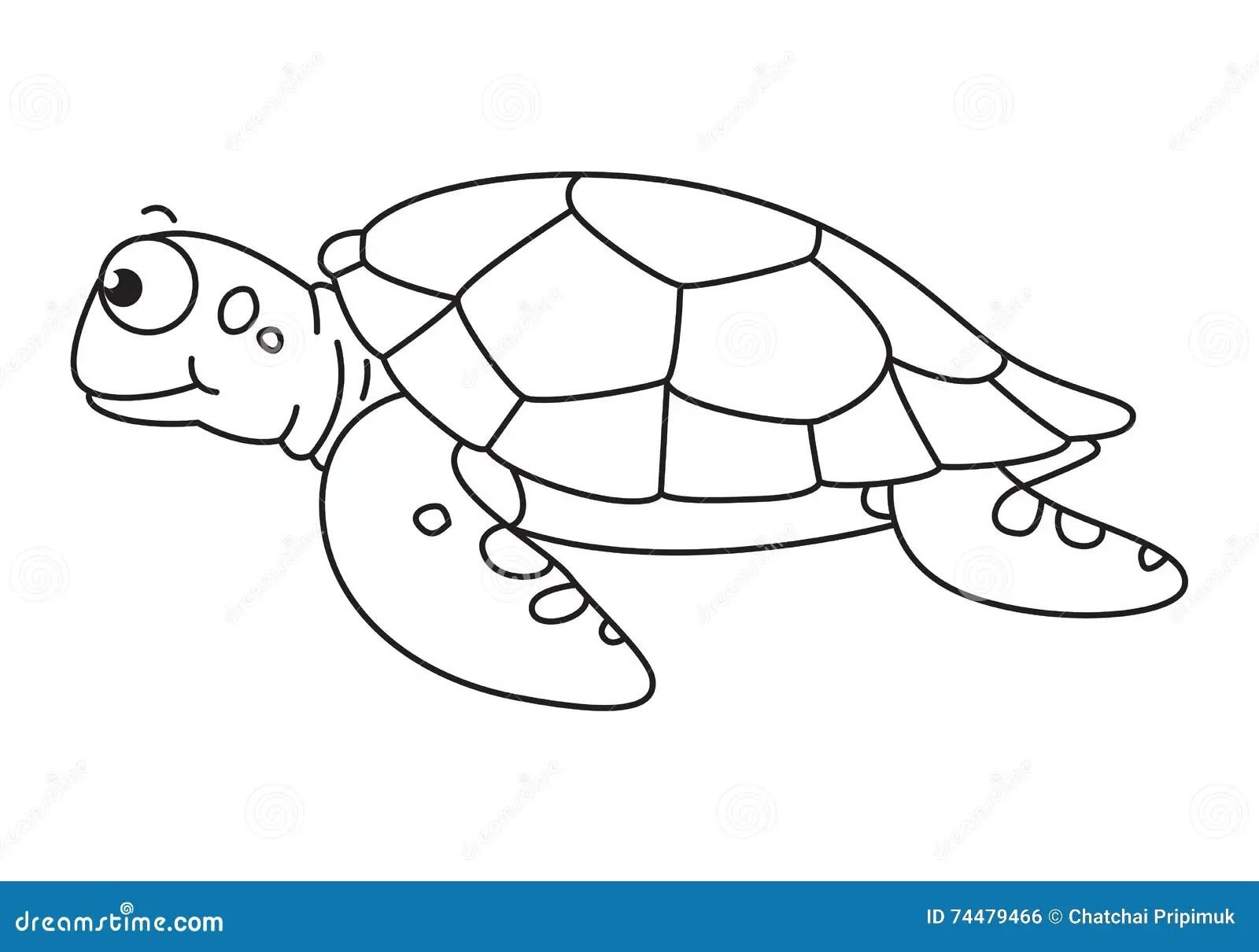 Cartoon Sea Turtle Vector Stock Vector Illustration Of