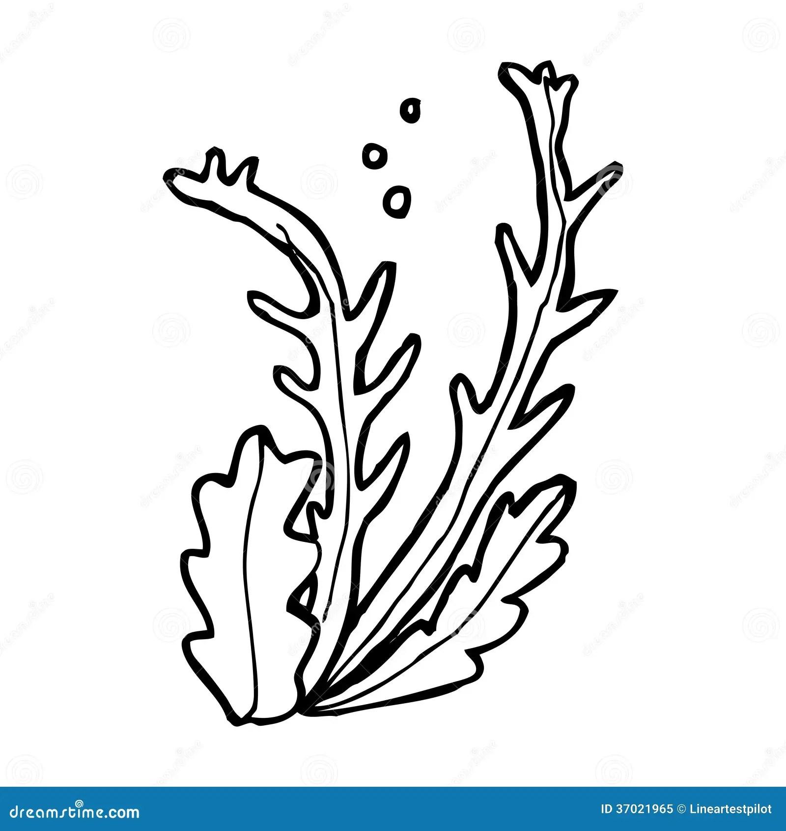 Cartoon seaweed stock illustration. Image of drawn, funny
