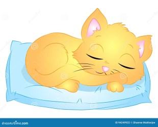 sleeping cat cartoon cute vector illustration pillow drawing