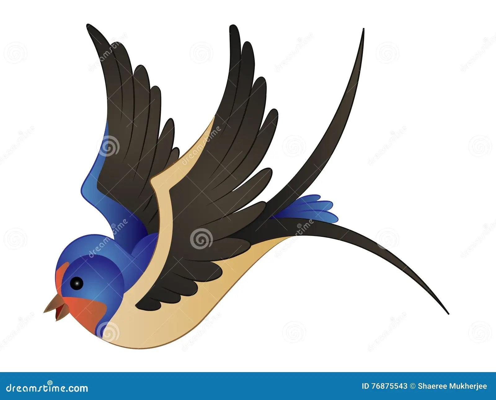 Swallow Vector Vector Illustration  CartoonDealercom