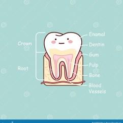Diagram For 5 Gum 7 Pin Blade Trailer Wiring Of Your Teeth All Elsavadorla