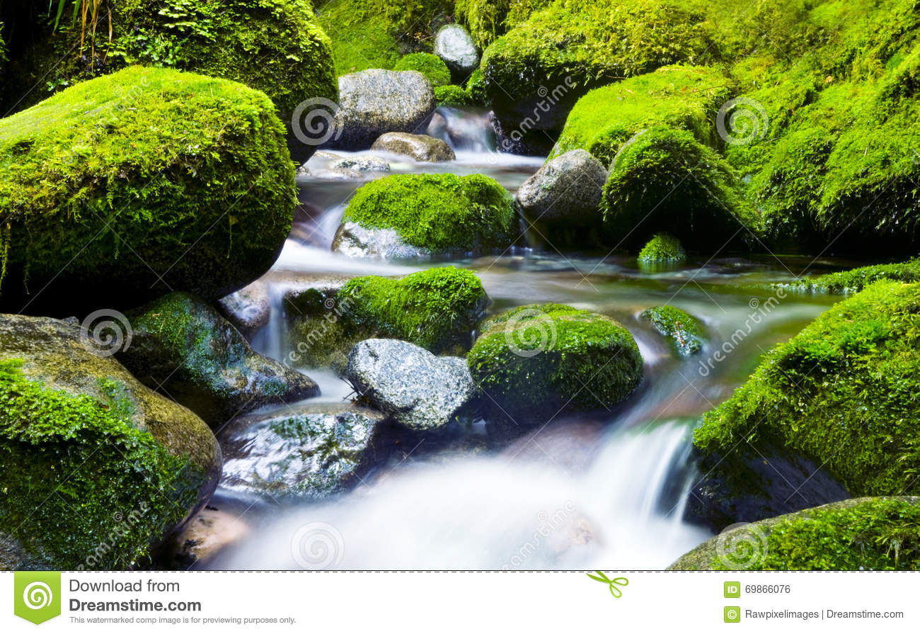 Falling Water Wallpaper Free Download Cascading Waterfall Fresh Nature Green Environment Concept