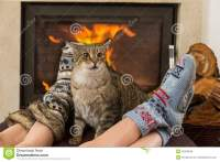 Cat And Feet In Front Of The Fireplace Stock Photo - Image ...