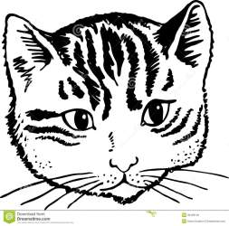 cat face drawing cute portrait simple clip illustration line cats clipart draw vector prawny fluffy pet illustrations preview cartoons getdrawings