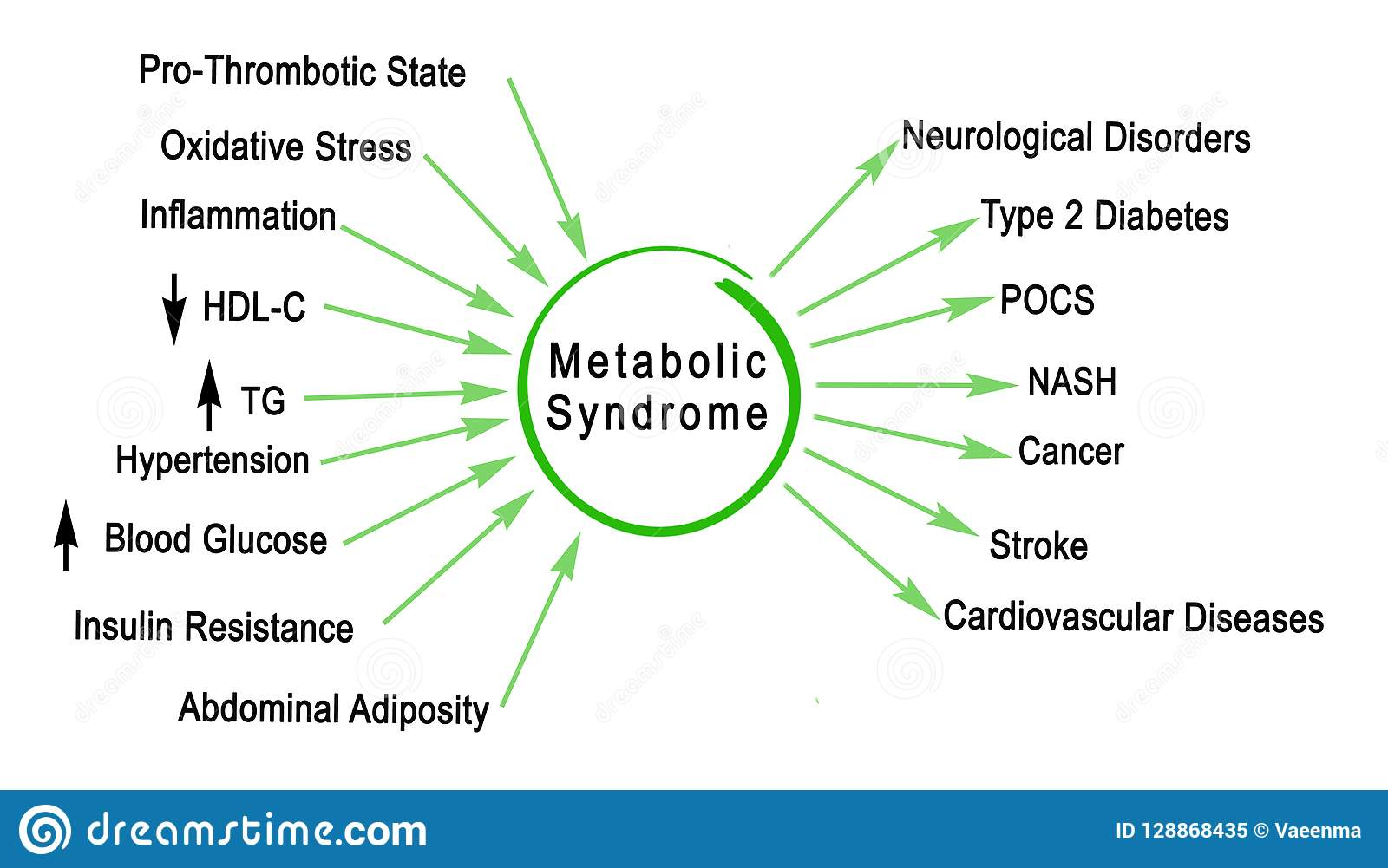 Metabolic Syndrome stock illustration. Illustration of concept - 128868435