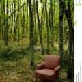 Chair in the woods stock image image 1661691