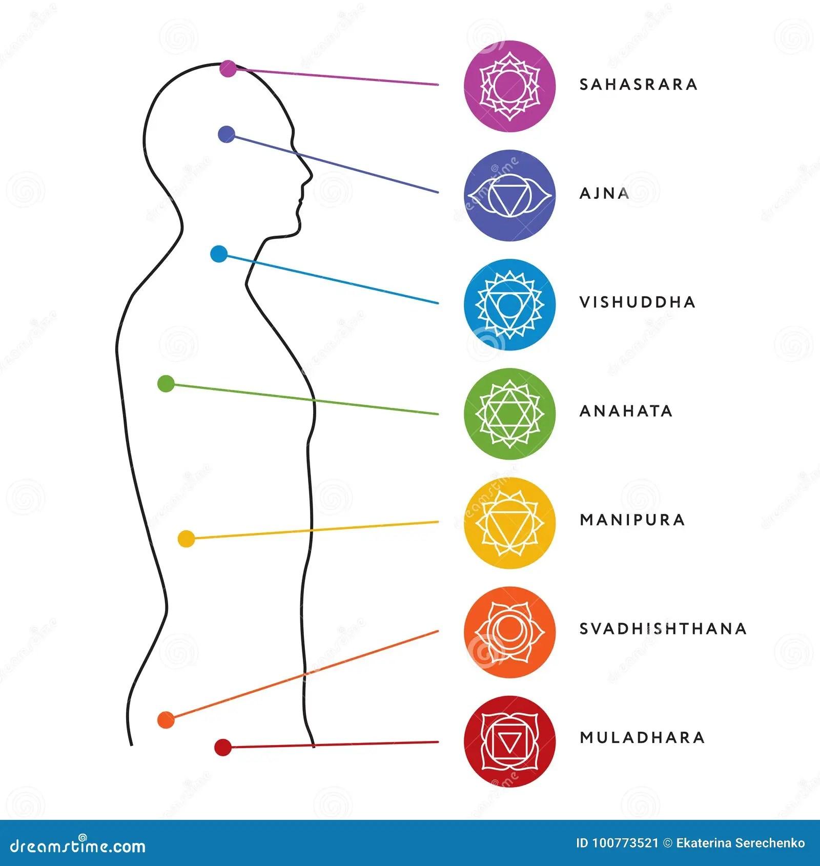 hight resolution of chakra system of human body chart seven chakra symbols location information of each chakra chakra centers