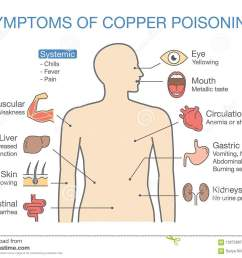 chart of the main symptoms of copper poisoning  [ 1300 x 1032 Pixel ]