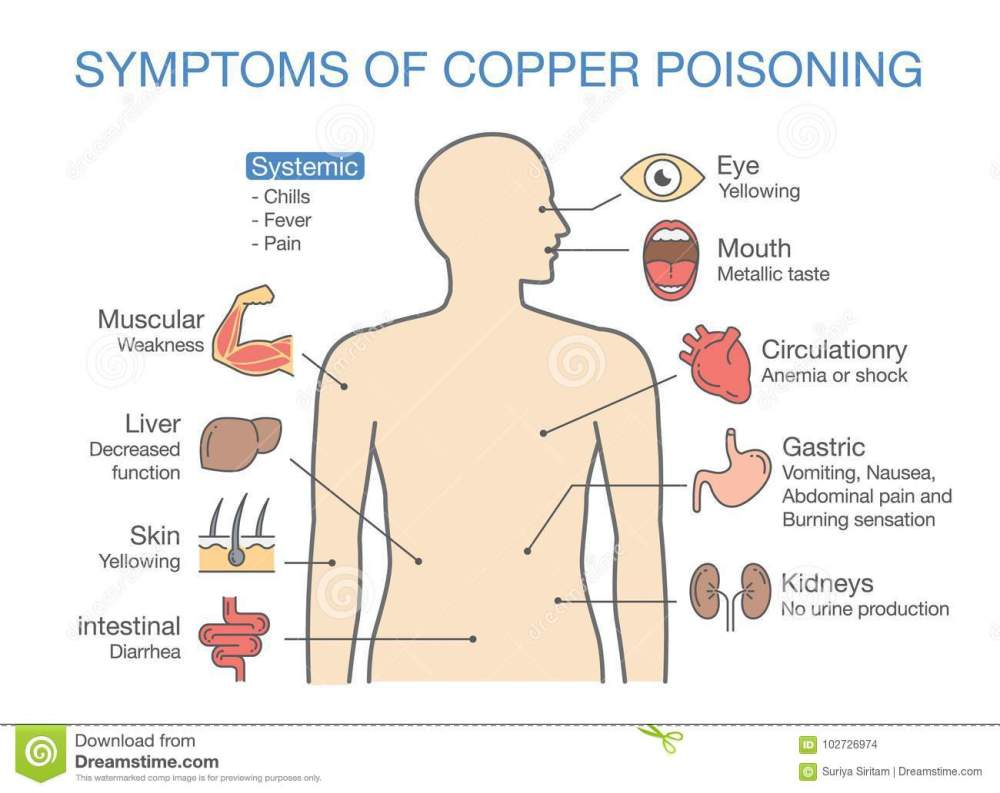 medium resolution of chart of the main symptoms of copper poisoning